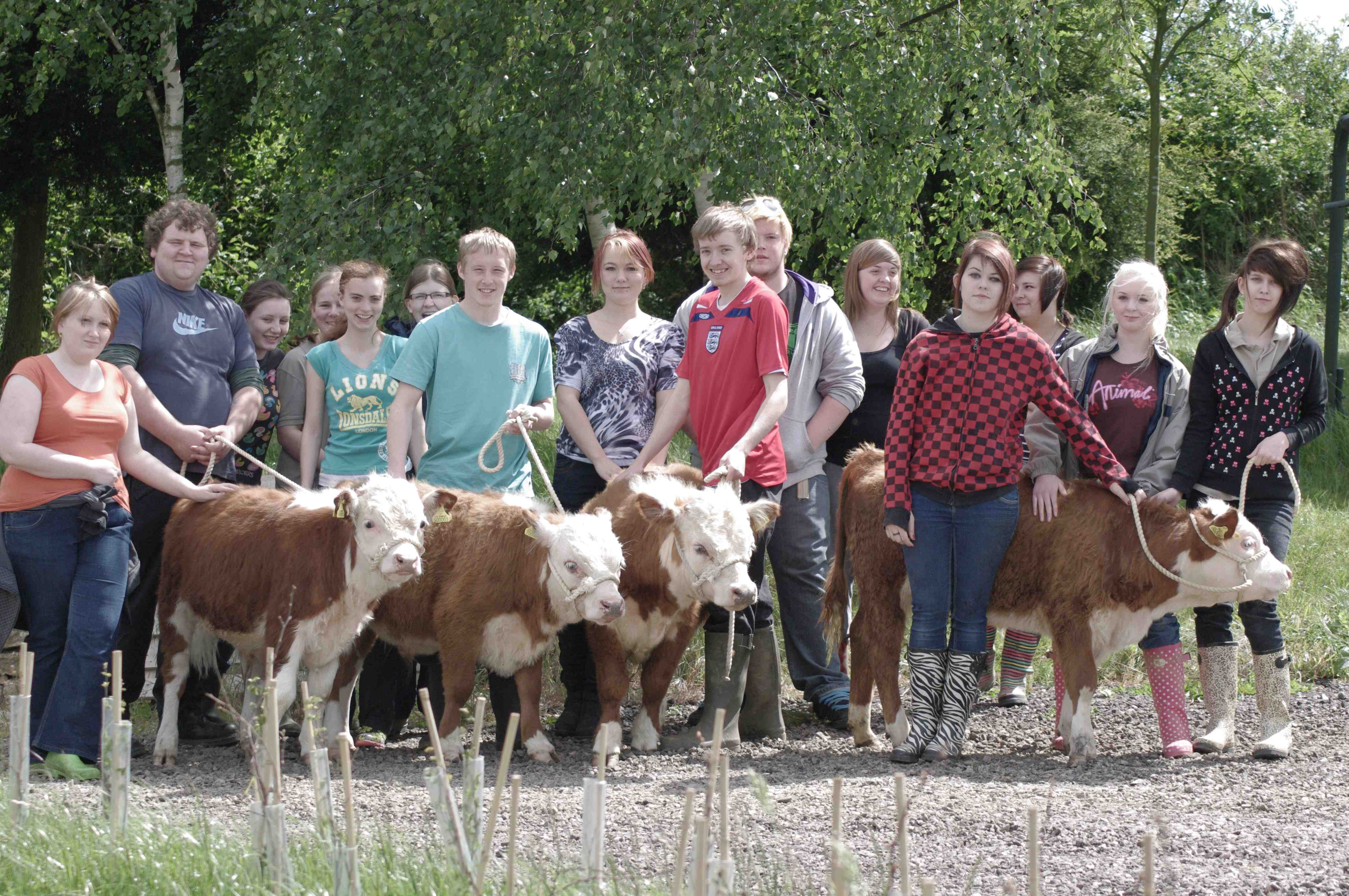 education-with-herefords